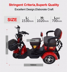 Electric Tricycle 3 Wheel Electric Leisure Scooter Battery tricycle Electric Motorcycle MODEL 1.0 25km/h ABS electronic brakes