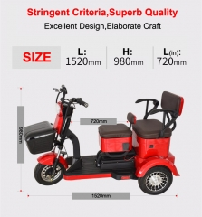 Electric Tricycle 3 Wheel Electric Leisure Scooter Battery Tricycle MODEL 6.0 25km/h ABS electronic brakes